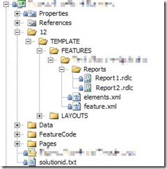DeployCustomApplicationWSPProject_2