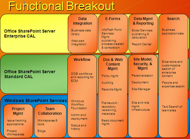 Functional Licensing Breatout for Microsoft Office SharePont Server