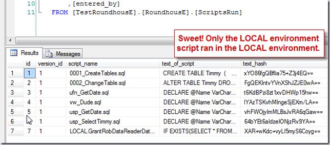 View of ScriptsRun table with run output