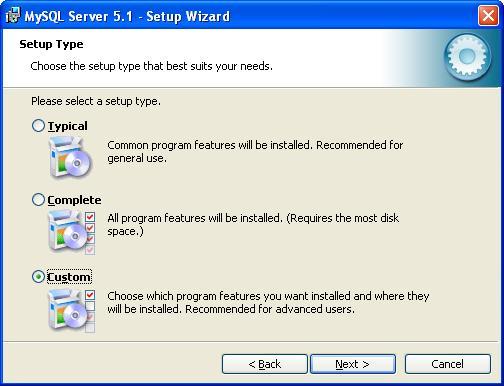 MySQL Installation - Type