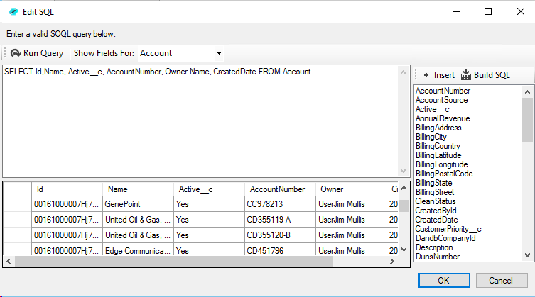 Accessing SalesForce Data Using SQL with Enzo Unified