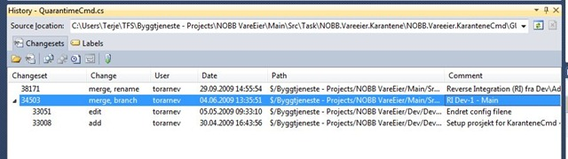 Branched history working in Visual Studio 2010 using TFS